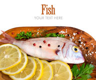 Fresh fish on wooden board. Fresh fish with lemon on a wooden board isolated on white Royalty Free Stock Photos