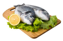 Fresh fish on wooden cutting Royalty Free Stock Image