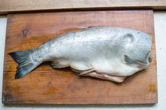 Fresh fish on wooden cutting board. Fresh dorado fish on wooden cutting board Royalty Free Stock Image