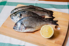 Fresh fish on wooden cutting board Stock Photography