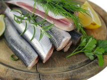 Fresh fishes herrings Stock Photo