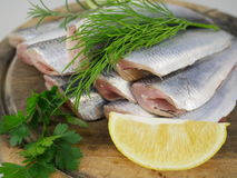 Fresh fishes herrings Royalty Free Stock Images