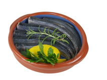 Fresh fishes herrings Royalty Free Stock Image