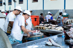 Fresh fishes inside the famous Ver Peso Market in Belem do Para, Brazil Royalty Free Stock Photo