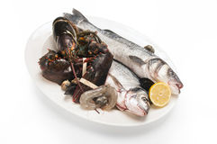 Fresh fishes, lobster, shrimps, mussels, with lemon on plate iso Royalty Free Stock Photography