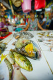 Fresh fishes in a market. For sale, Philippines Stock Photos
