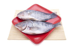 Fresh fishes on plate Royalty Free Stock Photo