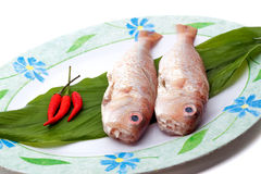 Fresh fishes on plate Stock Photo