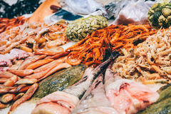 Fresh Fishes And Seafood On Ice In Market Royalty Free Stock Photos