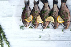 Fresh fishes tails with lemon Stock Images