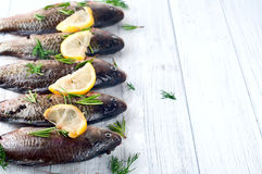 Fresh fishes tails with lemon Stock Photography