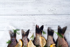 Fresh fishes tails with lemon Stock Photos