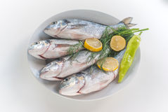 Fresh fishes with vegetables Royalty Free Stock Image