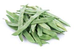 Fresh flat green beans Stock Photos