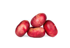 Fresh flat  nectarines Stock Images
