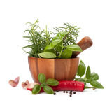 Fresh flavoring herbs and spices in wooden mortar Stock Photography