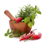 Fresh flavoring herbs and spices in wooden mortar. Isolated on white background royalty free stock photography