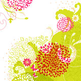 Fresh floral background with green Royalty Free Stock Images