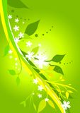 Fresh Floral Green. Illustration of floral designs in fresh greens and yellows Stock Photo