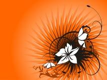 Fresh floral illustration Stock Images
