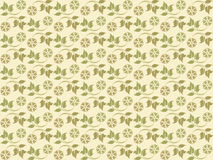 Fresh floral patterns. Illustration of floral patterns in clean and clear style Royalty Free Stock Images