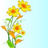Fresh Flower Royalty Free Stock Photos