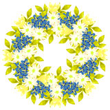 Fresh flower background Royalty Free Stock Photography