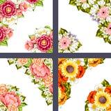 Fresh flower background Stock Photography