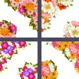 Fresh flower background Royalty Free Stock Photo