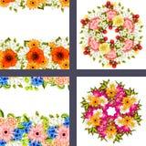Fresh flower background Royalty Free Stock Photos
