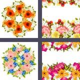 Fresh flower background Stock Image