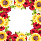 Fresh flower background Royalty Free Stock Images
