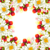 Fresh flower background Stock Images