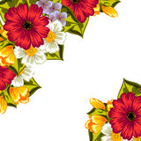 Fresh flower background Stock Photography