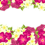 Fresh flower background Royalty Free Stock Photography