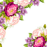 Fresh flower background Royalty Free Stock Image