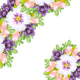 Fresh flower background Stock Image