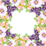 Fresh flower background Royalty Free Stock Photos