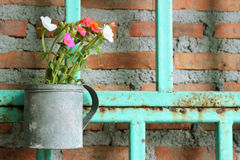 Fresh flower in pots Stock Images