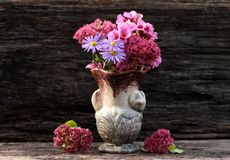 Flower power aromatherapy Stock Images