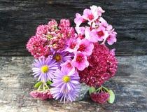 Flower power aromatherapy Stock Photos