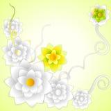 Fresh Flower Stock Images