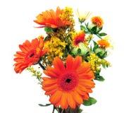 Fresh Flowers Royalty Free Stock Image