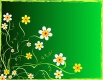Fresh flowers royalty free illustration
