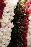 Fresh Flowers stock photo