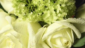 Fresh flowers stock footage