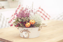 Fresh flowers bouquet Royalty Free Stock Image