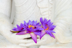 Fresh flowers in Buddha image hands Stock Photos
