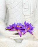 Fresh flowers in Buddha image hands Stock Images