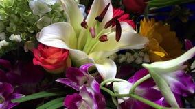 Fresh flowers stock footage